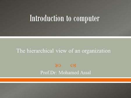  Prof.Dr: Mohamed Assal The hierarchical view of an organization.