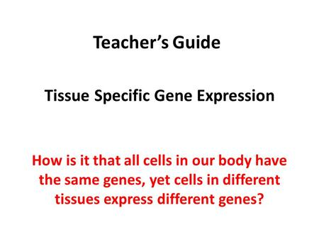 Teacher's Guide Tissue Specific Gene Expression How is it that all cells in our body have the same genes, yet cells in different tissues express different.