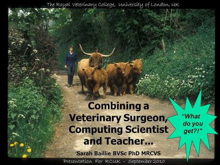 © Sarah Baillie Combining a Veterinary Surgeon, Computing Scientist and Teacher... Sarah Baillie BVSc PhD MRCVS The Royal Veterinary College, University.