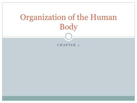CHAPTER 1 Organization of the Human Body. The Study of anatomy and physiology has paralleled the development of cultures, religion, and technology. Ancient.