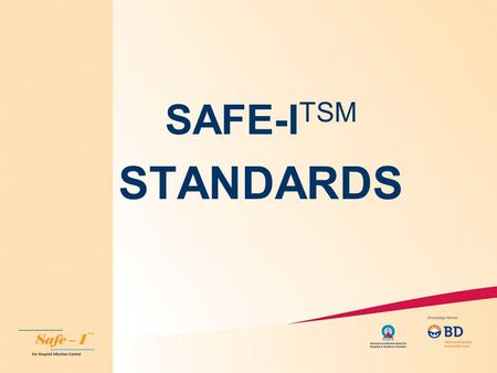 SAFE-ITSM STANDARDS.
