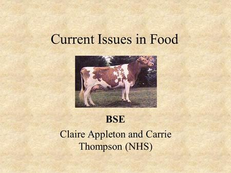 Current Issues in Food BSE Claire Appleton and Carrie Thompson (NHS)