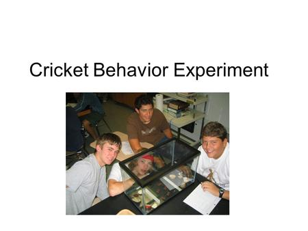 Cricket Behavior Experiment. Variables? Control? Any way to improve the design?