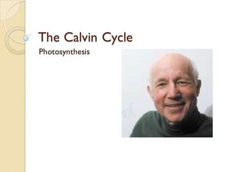 The Calvin Cycle Photosynthesis. The Big Picture The Calvin cycle ◦ Occurs in the stroma ◦ Cyclic: 'final' product is the 'initial' reactant ◦ Details.