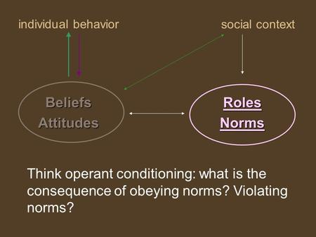 Individual behavior RolesNorms social context BeliefsAttitudes Think operant conditioning: what is the consequence of obeying norms? Violating norms?
