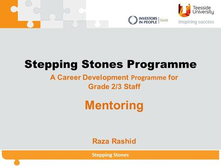 Stepping StonesStepping Stones Programme Stepping Stones Stepping Stones Programme A Career Development Programme for Grade 2/3 Staff Mentoring Raza Rashid.