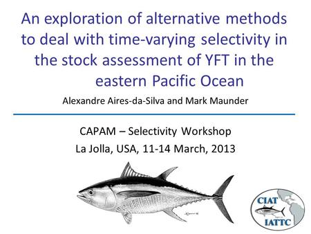 An exploration of alternative methods to deal with time-varying selectivity in the stock assessment of YFT in the eastern Pacific Ocean CAPAM – Selectivity.
