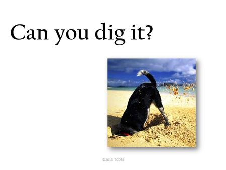 "Can you dig it? ©2013 TCDSS. "" a problem well put is half solved."" -John Dewey ""It's so much easier to suggest solutions when you don't know too much."