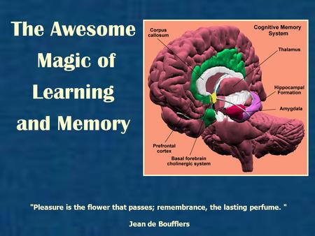 The Awesome Magic of Learning and Memory Pleasure is the flower that passes; remembrance, the lasting perfume.  Jean de Boufflers.
