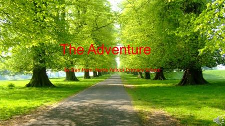 The Adventure By Sian from Natte Yallock Primary School.