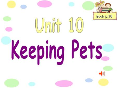 Book p.38 How many pets are in the pet shop? What may we see there today? Are there rabbits and mice hamsters and rats sleeping in nests of hay? Is there.