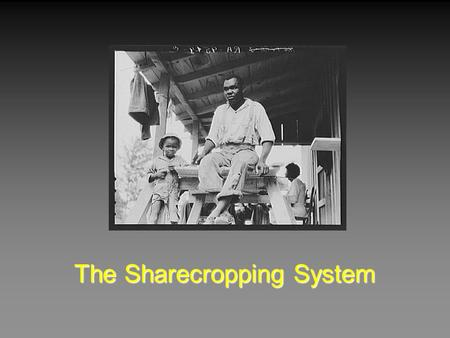 The Sharecropping System
