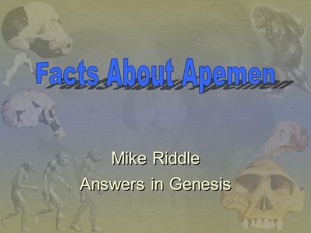 Facts About Apemen Mike Riddle Answers in Genesis.