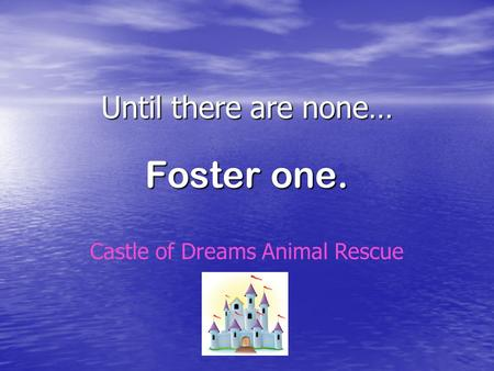 Until there are none… Foster one. Castle of Dreams Animal Rescue.