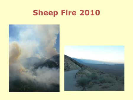 Sheep Fire 2010. Issues Firefighter and public safety Sheep Creek watershed Powerline corridor to Cedar Grove Cedar Grove infrastructure Impact on.