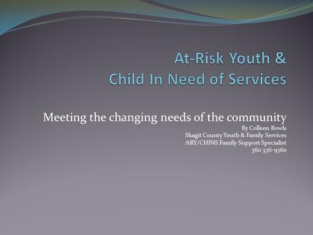 Meeting the changing needs of the community By Colleen Bowls Skagit County Youth & Family Services ARY/CHINS Family Support Specialist 360 336-9360.