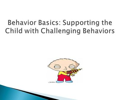 Behavior Basics: Supporting the Child with Challenging Behaviors.