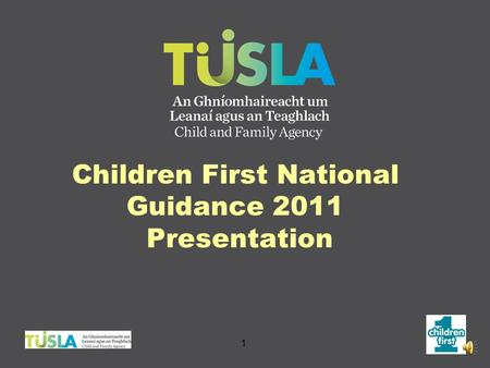 Children First National Guidance 2011 Presentation