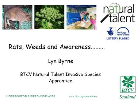 INSPIRING PEOPLE, IMPROVING PLACESwww.btcv.org/naturaltalent Rats, Weeds and Awareness......... Lyn Byrne BTCV Natural Talent Invasive Species Apprentice.