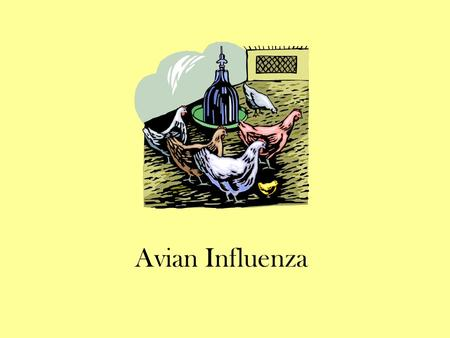 Avian Influenza. Covered Topics What is avian influenza? Avian influenza and humans Symptoms of avian influenza Avian influenza treatment Avian influenza.