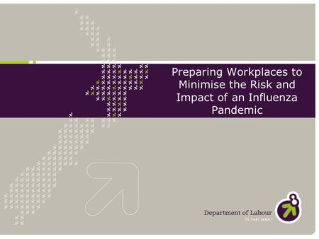 Preparing Workplaces to Minimise the Risk and Impact of an Influenza Pandemic.