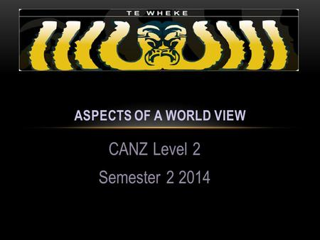 CANZ Level 2 Semester 2 2014 ASPECTS OF A WORLD VIEW.