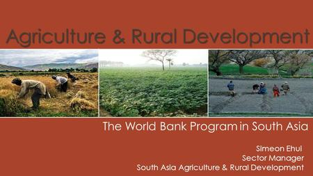 Agriculture & Rural Development The World Bank Program in South Asia Simeon Ehui Sector Manager South Asia Agriculture & Rural Development.