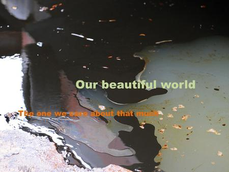 Our beautiful world The one we care about that much.