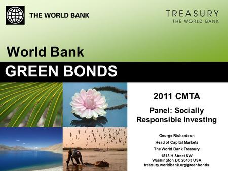 2011 CMTA Panel: Socially Responsible Investing George Richardson Head of Capital Markets The World Bank Treasury 1818 H Street NW Washington DC 20433.