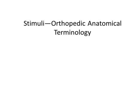 Stimuli—Orthopedic Anatomical Terminology