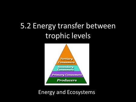 5.2 Energy transfer between trophic levels Energy and Ecosystems.