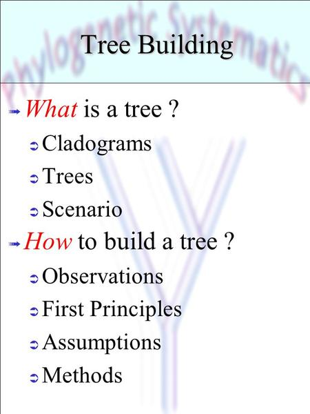 Tree Building What is a tree ? How to build a tree ? Cladograms Trees