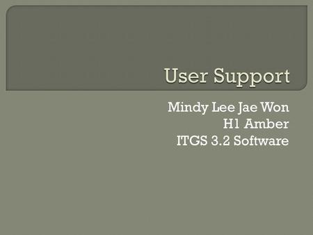 Mindy Lee Jae Won H1 Amber ITGS 3.2 Software. 1. What does User Support mean? 2. What are Manuals? 3. What are Assistants? 4. What are Tutorials? 5. What.