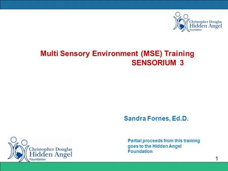 Multi Sensory Environment (MSE) Training SENSORIUM 3