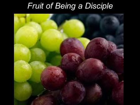 "Fruit of Being a Disciple. The next day John saw Jesus coming toward him and said, ""Behold, the Lamb of God, who takes away the sin of the world!"" John."
