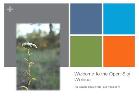 + Welcome to the Open Sky Webinar We will begin at 6 pm- see you soon!