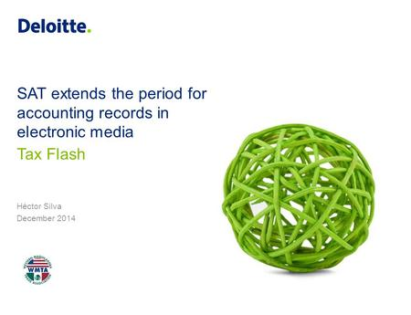 SAT extends the period for accounting records in electronic media Héctor Silva December 2014 Tax Flash.