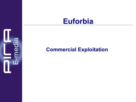 Euforbia Commercial Exploitation. The Players The audience to be barred / protected Parents Officials / Institutions ISPs Content Owners / Distributors.