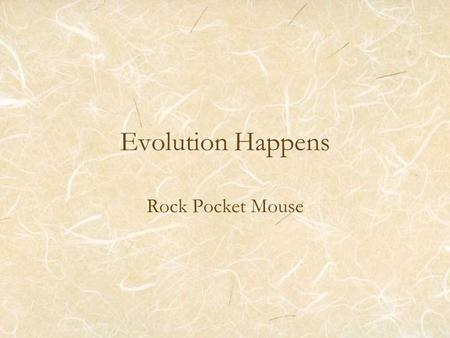 Evolution Happens Rock Pocket Mouse. Sandy colored mouse –2 copies of same allele (sandy) Black colored –At least one copy of black allele.