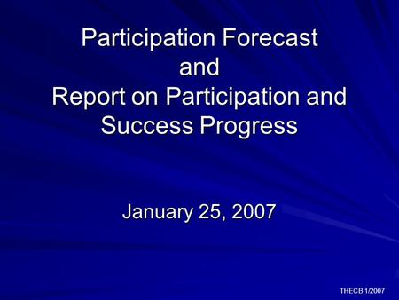 THECB 1/2007 Participation Forecast and Report on Participation and Success Progress January 25, 2007.