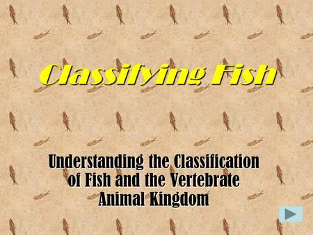 Classifying Fish Understanding the Classification of Fish and the Vertebrate Animal Kingdom.