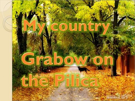 Grabow on the Pilica is a village which is situated in the kozienicki voivodeship. It is very attractive place from the point of view of many forests,