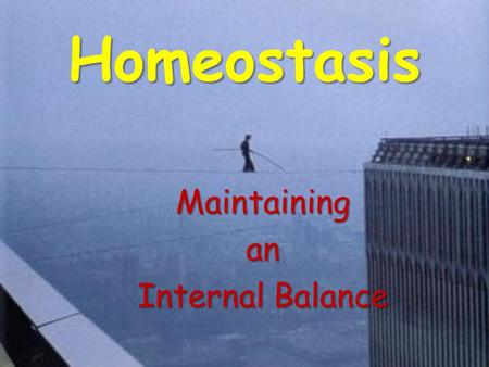 Homeostasis Maintainingan Internal Balance. Homeostasis The property of a system, either open or closed, that regulates its internal environment so as.