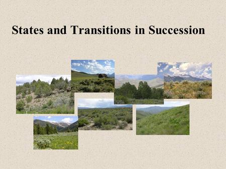States and Transitions in Succession. Plant Community Succession (Initial Ideas – F.E. Clements) Natural Potential Large Variation Between Years Climax.