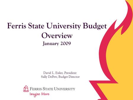 Ferris State University Budget Overview January 2009 David L. Eisler, President Sally DePew, Budget Director.