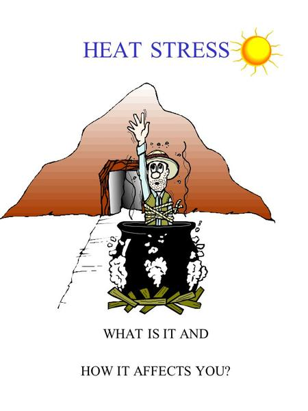 HEAT STRESS WHAT IS IT AND HOW IT AFFECTS YOU?. External Factor Affecting Heat Stress Air movement Clothing Radiant heat ( hot vessels and sun) Humidity.