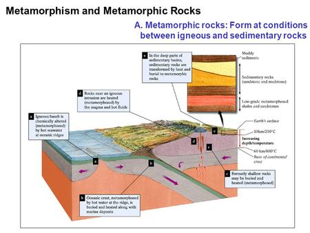 Metamorphism and Metamorphic Rocks A. Metamorphic rocks: Form at conditions between igneous and sedimentary rocks.