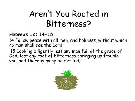 Aren't You Rooted in Bitterness? Hebrews 12: 14-15 14 Follow peace with all men, and holiness, without which no man shall see the Lord: 15 Looking diligently.
