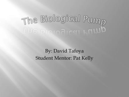 By: David Tafoya Student Mentor: Pat Kelly. The Biological Pump is the process in which CO2 fixed in photosynthesis is transferred to the interior of.