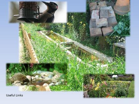 Useful Links What do you think we will find in this picture, I wonder? Click on the bricks or the pot to find out!